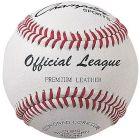 Champion NFHS Baseball